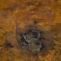 Matarranz. Sin título. 2003. Mixta/madera. 180x290 cm