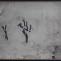 Miguel Galano. Sin título. 1997. Óleo/papel. 30 x 40 cm