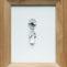 Isabel Cuadrado. El oído insomne. 1998. Mixta/lienzo. 35 x 27 cm